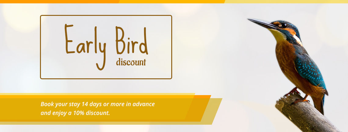 Early Birds Discount